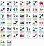 Blumen-Klotz der preiswerte Qualitäts-bereift Gummiänderung- am objektprogramm3d Charme