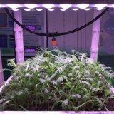 O diodo emissor de luz cheio preferido do espetro do crescimento de planta cresce a luz