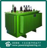 transformador inmerso en aceite trifásico amorfo de la base de hierro de aleación 15kv