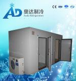 Sitio de almacenaje/sitio modular de conservación en cámara frigorífica/sitio de almacenaje de congelador de la fruta