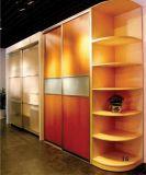 Garde-robe/cabinet/meubles à la maison (WD-16)