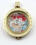 SpeicherLocket mit Brithstone im Glas stellte Münzen-Platte gegenüber
