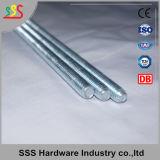 Staaf van de Fabrikant DIN975 van China de Volledige Ingepaste