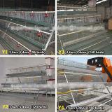 Cage automatique de poulet de vente chaude pour la couche
