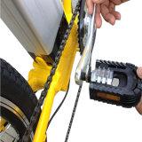 Peso leve bicicleta elétrica Foldable de 20 polegadas (RSEB-441)