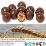 即刻チョコレート飲み物のための中国の工場モルトエキスの粉
