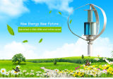 Q 600W Maglevの縦の軸線の住宅の風力発電機