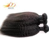 Extensão natural Mongolian do cabelo do cabelo humano do Virgin 8A barato
