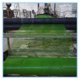 Rete fissa di plastica dell'HDPE caldo di vendite per l'allevamento