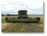 Máquina automotora de la máquina segadora de grano