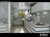 Welbomのラッカー光沢度の高い台所家具および台所デザイン