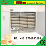 Tenuta dei 5000 Eggs Automatic Egg Incubator per Poultry Equipment