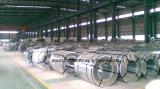 Chapa de telhado de chapa metálica Hot Ented Aluminized / Galvalume / Galvanized Steel Coil (0.14mm-0.8mm) Bobina de aço laminada a quente / quente
