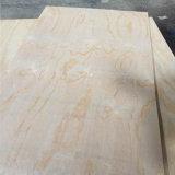 Chapas de madera de pino llena el pegamento E1 BB / CC Grado 2.7-21mm 1220 * 2440mm