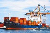 Vestuário do frete de mar do transporte de China à porta dos EUA ao serviço da porta