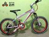 """20 """" MTB, велосипед горы, велосипед горы детей"""