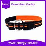 개 목걸이의 사려깊은 연약한 덧대진 애완 동물 제품