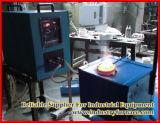 15kw, 220V, oro 5kg che fonde il piccoli fonditore/stufa/fornace di induzione