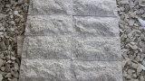 Bloque natural de la seta de la piedra del granito G682 para el revestimiento de la pared