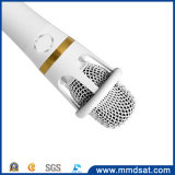 2017 микрофон в реальном маштабе времени радиотелеграфа Karaoke широковещания E300 профессионала