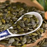 Новые семена тыквы Gws урожая от Китая