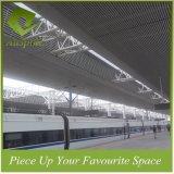streifen-Leitblech-Decken-Baumaterial des heißen Verkaufs-40W*60h Aluminium