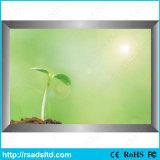 LEDライトボックスを広告する細いポスターフレーム