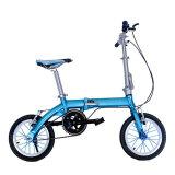 Bicicletta d'profilatura di alluminio compatta calda di Sale14inch