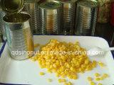 Cereais de milho doce em conserva de Outono de 2015