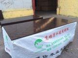 Пленка сбываний горячей Фабрики-Непосредственн сбывания горячая смотрела на переклейку конструкции Shandong Chengxin переклейки ую пленкой в промышленных зданиях