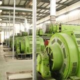 Hfo 발전소 5mw (2X2.5MW) Hfo 또는 디젤 엔진 Genset
