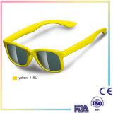 La plus défunte lunettes de soleil molles polarisées de qualité de modèle par mode pour des gosses