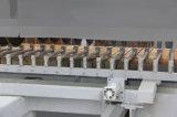 100*100 돌 절단기 자동적인 석판 커트 라인