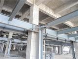 Struttura d'acciaio/magazzino/gruppo di lavoro chiari dell'edilizia