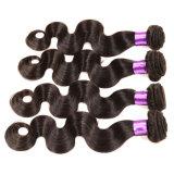7Aブラジルのバージンの毛ボディ波のOmbreの人間の毛髪の織り方のOmbreブラジルボディ波ブラジルの毛3束のボディ波のT1b/4/27#