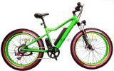 内部電池の脂肪質のタイヤ26インチ山の電気自転車