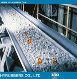 Acquisto in linea termoresistente del nastro trasportatore fatto in Cina