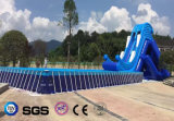 Бассеин рамки PVC конструкции воды кокосов раздувной/плавательный бассеин LG8090
