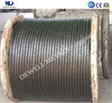 Ungalv Constr. corde du fil d'acier 1X19