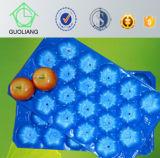 Frucht-Gemüse-Industrie-Gebrauch-Wegwerfkunststoffgehäuse-Tellersegment