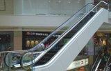 판매를 위한 안전한 건물 전송자 에스컬레이터