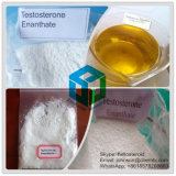 Steroid anabolico Powder Testosterone Enanthate 315-37-7 per Muscle Gaining