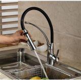 Le gicleur simple de pulvérisateur du traitement deux retirent des tarauds de mélangeur de cuisine