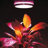 Полный спектр СИД растет света, котор 54W E27 СИД растут система Hydroponics завода цветка шарика светильника
