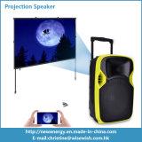 12 pouces de chariot de l'étape DEL de haut-parleur en plastique de projection avec la batterie