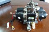 Zwei Doppelschalter-Luft-Fahraufhebung-Verteilerleitung-Ventil des digital-Luft-Anzeigeinstrument-Panel-4