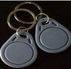 125kHz RFID graues Schlüsselmarken-Unterstützungs-Soem (SD3G)