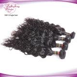 Tecelagem natural indiana do cabelo humano de Remy do Virgin da onda do fornecedor do cabelo