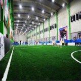 Vorfabriziertes Stahlmetall Sports Gebäude mit Nizza Qualität