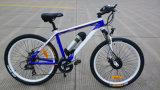 36V 10.4ah Samsung Zelle Tektro Scheibenbremse E-Fahrrad